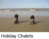 dog friendly holiday chalets